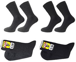 NORDPOL 100% Schurwolle Business Socken SCHWEIßSOCKEN - 1/1 RIPPE FEINGESTRICKT