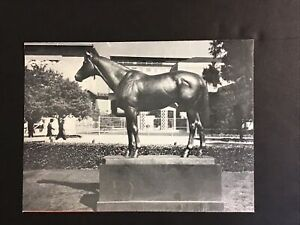 SEABISCUIT PHOTO and 1950 Original Article  Horse Racing