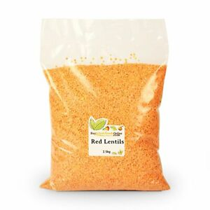 Red Lentils 2.5kg   Buy Whole Foods Online   Free UK Mainland P&P