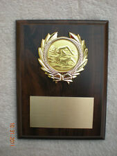 Swimming, or any Other Sport, Award Plaque 6x8 Trophy Free engraving