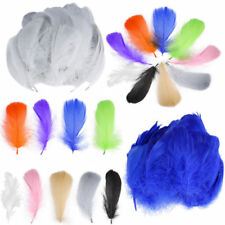 Headband Feather Sewing Trims
