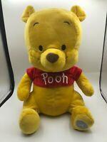 Official Hong Kong Disneyland Disney Winnie The Pooh Plush Stuffed Toy Animal