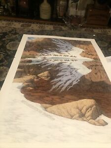 BEV DOOLITTLE Rare Examination Proof Print. Directly from Greenwich workshop Art