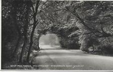 New Forest.Lyndhurst-Bournemouth Road  Orig.Old U/U P/C (Pub:Judges')-  Mint !