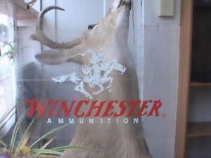 Winchester Sticker Decal Genuine Factory Winchester Vinyl Decal Sticker