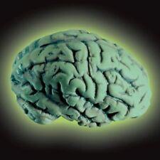 Glow Brain