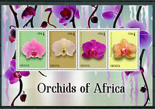 Ghana 2014 MNH Orchids of Africa 4v M/S Flowers Flora Butterfly Orchid