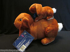 """Nut Brown hare Plush Kohls 12"""" Guess How Much I Love You Rabbit Baby Bunny"""