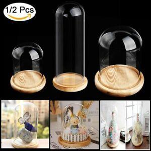 Glashaube Cloche DIY Deko Glasdom Glaskuppel Glassturz Glasglocke mit Holz Base