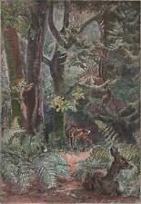MARJORIE SHERLOCK (1897-1973) Signed Etching THE ROE DEER c1930 8/50