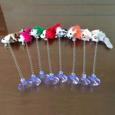 PIUMA Mouse imitazione MOLLA GATTO GIOCO INTERAZIONE giocattolo con coppa