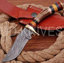 8 INCH UD CUSTOM DAMASCUS STEEL HUNTER KNIFE Stag/ANTLER  HANDLE B6-11539