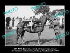 OLD POSTCARD SIZE PHOTO WWI ANZAC CORPS MACHINE GUN HORSE PASSCHENDAELE c1917