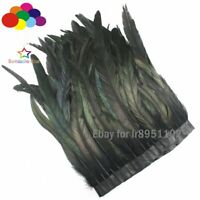 Black Cock tail feather Trim Fringe 25-35cm / 10-14inch Width Decorative Craft