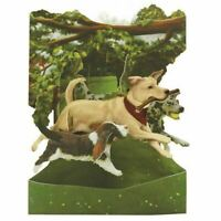 Santoro Interactive 3-D Swing Greeting Card, Dogs in the Park (SSC135)