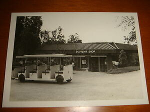 1974 View of Souvenir Shop inside Singapore Zoo, Black & White Photograph