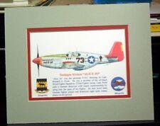 Tuskegee Airmen Capt Wendell Pruitt's P-51 Matted 8X10 Print by Willie Jones Jr