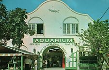 Aquarium Key West Fl Florida Fish Life Shells Turtles Eel Advertising Postcard