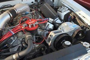 Ford SBF Serpentine 8 rib Race Kit Procharger F-1C / F-1R (EFI Renegade) 85-93