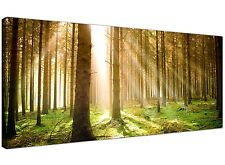 Green Cheap Canvas Print of Trees Forest  - 120cm x 50cm - 1042