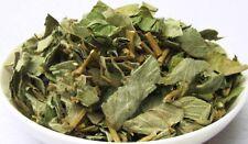 15oz Lysimachia Christinae Hance 金錢草  jinqiancao Gold Coin Grass Herb US Seller