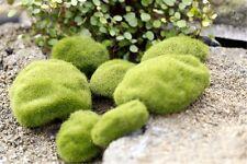 6pcs Miniature Artificial Moss 3 sizes Fairy Garden Terrarium Bonsai Crafts