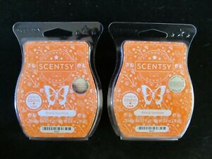Lot of 2 Scentsy Bars ~RISE & SUNSHINE~ NEW