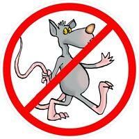 3 - No Rats Walking Union Oilfield Hard Hat / Helmet Sticker HH813