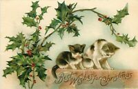 DB Christmas Postcard L352 Two Cats Holly Printed Germany Cancel 1908 Embossed