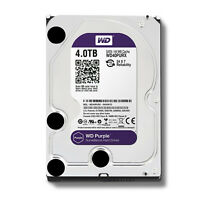 New for Western Digital WD Purple 4TB HDD SATA lll Hard Disk Drive WD40PURX