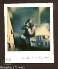 DAVID LEVINTHAL 'Modern Romance', 2000 SIGNED Vintage Polaroid SX-70 Photograph