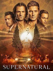 Supernatural: Season 15 (DVD) Jared Padalecki, Jensen Ackles, Jim Beaver