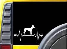 Pharaoh Hound Lifeline K777 8 inch Sticker dog decal