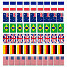 Six 6 Nations Bunting Rugby 10m  Country 20 Flag France German French Cup Wales