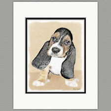 Basset Hound Puppy Original Art Print 8x10 Matted to 11x14