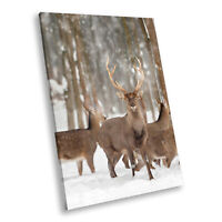 Herd Deer Stag Snow Forest Portrait Animal Canvas Wall Art Picture Prints