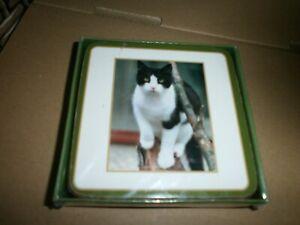 Sawley Fine Arts Ltd 'Faithful Friends' Black/White Cat Coasters x 6