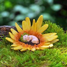 Miniature Fairy Garden Flower Bud Baby Gerbera Daisy GO 16983