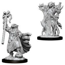 D&D Nolzur's Marvelous Miniatures: Female Dragonborn Sorcerer (73674)