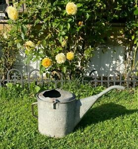 Rustic Vintage Antique Galvanized Watering Can w/Long Neck Dover