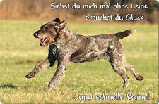Deutsch DRAHTHAAR - A4 Alu Warnschild Hundeschild SCHILD Türschild - DDR 02 T12