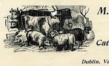 Antique 1895 Letterhead M. Eisenman Cattle Sheep and Hogs DUBLIN VA Virginia