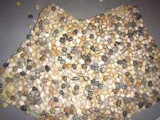 """Polished Cobblestone Pebble Tile 15"""" x 15"""" - River Rock Stone (Set of 2 Tiles)"""