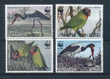[53573] Zambia 1996 Birds Vögel Oiseaux Ucelli WWF Stork Love bird MNH