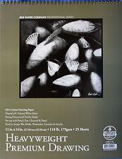 "Bee Paper Co.: Premium Drawing Paper, 25% Cotton, 11""X14"", 110 lb., 25 Sheets"