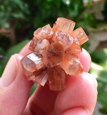 14.1g Nice Flowery Orange ARAGONITE Crystal Cluster Mineral Specimen/d47