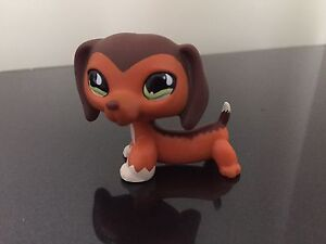 Littlest Pet Shop Dachshund #675 Brown Puppy Green Eyes LPS USA SELLER