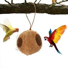 New listing Coconut Bird Nest Safety Hiding House Parrot Conures Hut Rats Cage Toy House