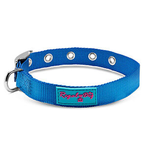 Nylon Dog Collar with Metal Buckle | for Small, Medium, and Large Dogs