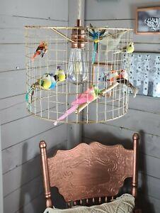 Gold Birdcage Cage Shade Chandelier Light Jungle Bird Lightshade Rainbow Aviary